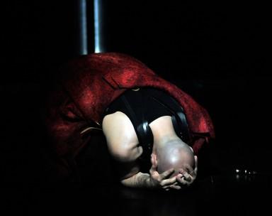 Vivaldi  2012-2013: