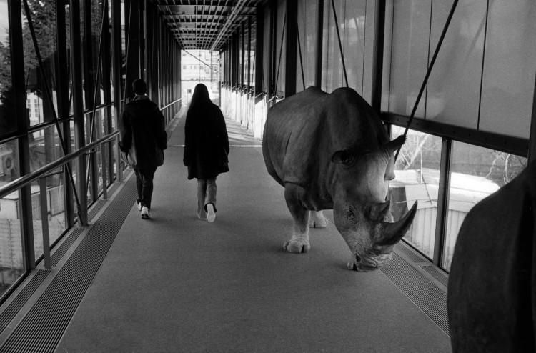 Entée du musée Zoologique