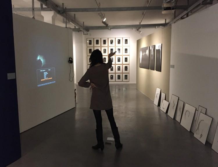 Manège à images et autres ensembles : Camille Grosperrin